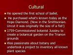 cultural2