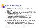 sap multiplexing2