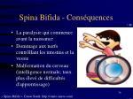 spina bifida cons quences