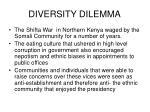 diversity dilemma