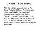 diversity dilemma2