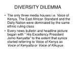 diversity dilemma6