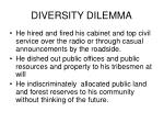 diversity dilemma9