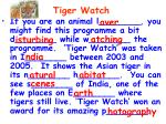 tiger watch1