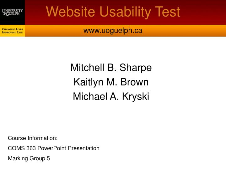 website usability test n.