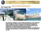 sectorial strategies1