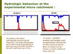 hydrologic behaviour at the experimental micro catchment