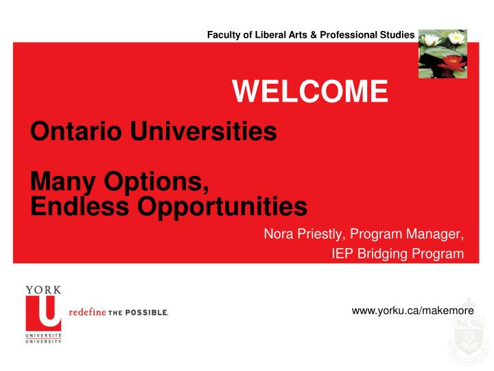 ontario universities many options endless opportunities n.