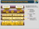 phosphorus architecture