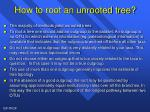 how to root an unrooted tree