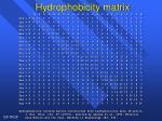 hydrophobicity matrix