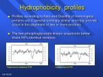 hydrophobicity profiles