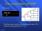 tree construction upgma3