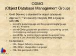 odmg object database management group