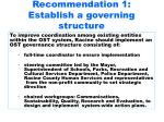 recommendation 1 establish a governing structure
