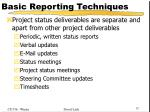 basic reporting techniques