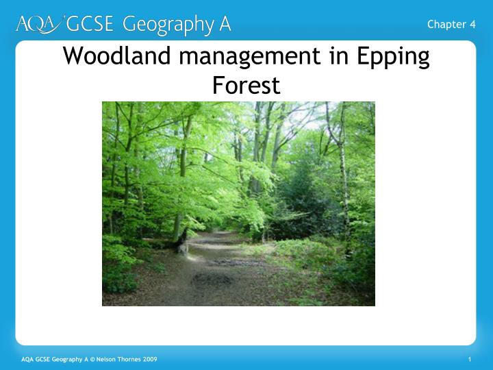 woodland management in epping forest n.