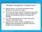 woodland management in epping forest1