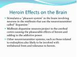 heroin effects on the brain
