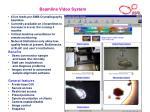 beamline video system