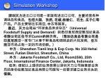 simulation workshop