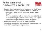 at the state level organize mobilize
