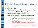 e5 i mplementation attributes1
