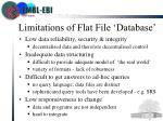 limitations of flat file database