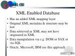 xml enabled database