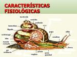 caracter sticas fisiol gicas2