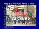migrant workers mice men