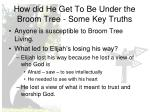 how did he get to be under the broom tree some key truths
