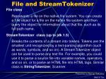 file and streamtokenizer