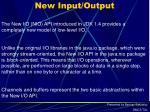 new input output