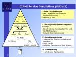diane service descriptions dsd 1