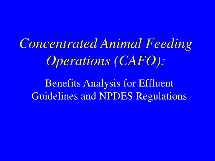 concentrated animal feeding operations cafo n.