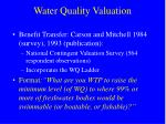 water quality valuation