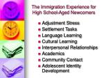 the immigration experience for high school aged newcomers