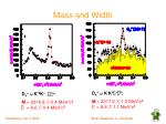 mass and width