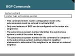 bgp commands