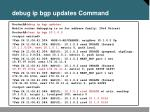 debug ip bgp updates command