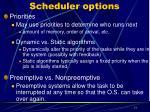 scheduler options