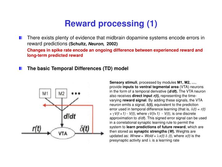 reward processing 1 n.