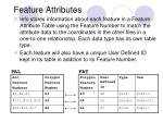 feature attributes