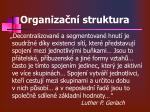 organiza n struktura