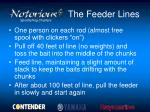 the feeder lines