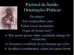 pastoral da sa de orienta es pr ticas17
