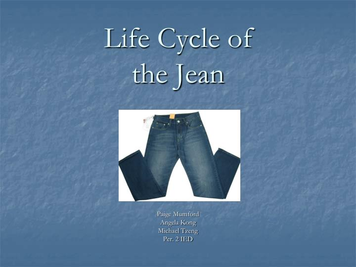 life cycle of the jean n.