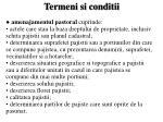 termeni si conditii7