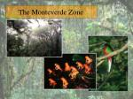 the monteverde zone